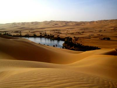 Desert and Oasis